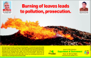 Stop the burning of leaves, Delhi Government's Ministry of Environment takesnote!