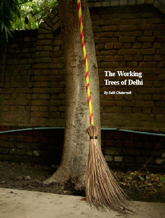 Working Trees of Delhi
