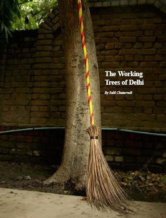 Working Trees ofDelhi